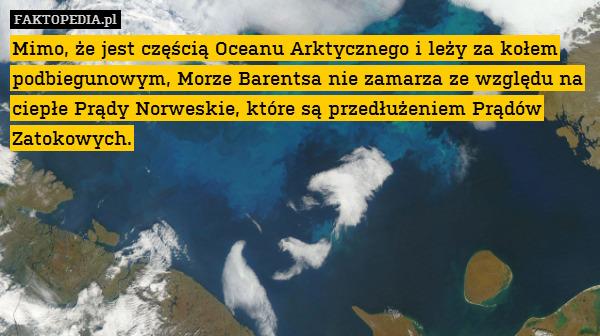 Mimo, że jest częścią Oceanu Arktycznego – Mimo, że jest częścią Oceanu Arktycznego i leży za kołem podbiegunowym, Morze Barentsa nie zamarza ze względu na ciepłe Prądy Norweskie, które są przedłużeniem Prądów Zatokowych.