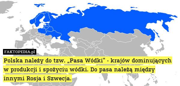 """Polska należy do tzw. """"Pasa Wódki"""" – Polska należy do tzw. """"Pasa Wódki"""" - krajów dominujących w produkcji i spożyciu wódki. Do pasa należą między innymi Rosja i Szwecja."""