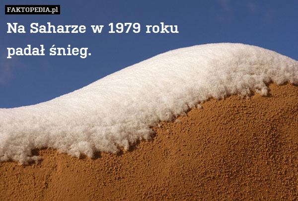Na Saharze w 1979 roku padał śnieg. – Na Saharze w 1979 roku padał śnieg.