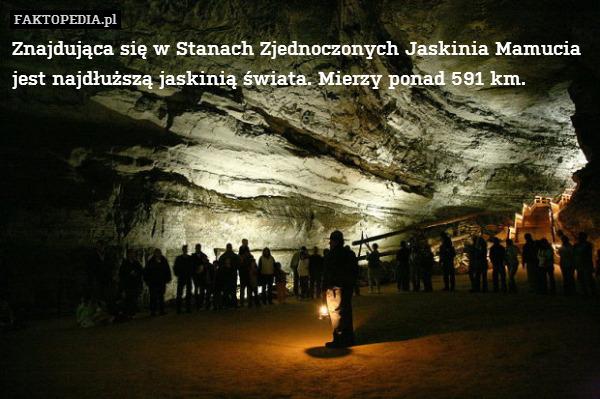Znajdująca się w Stanach Zjednoczonych – Znajdująca się w Stanach Zjednoczonych Jaskinia Mamucia jest najdłuższą jaskinią świata. Mierzy ponad 591 km.