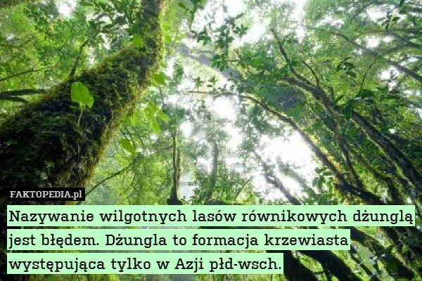 Nazywanie wilgotnych lasów równikowych – Nazywanie wilgotnych lasów równikowych dżunglą jest błędem. Dżungla to formacja krzewiasta występująca tylko w Azji płd-wsch.