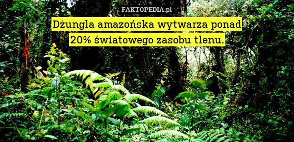 Dżungla amazońska wytwarza ponad – Dżungla amazońska wytwarza ponad 20% światowego zasobu tlenu.