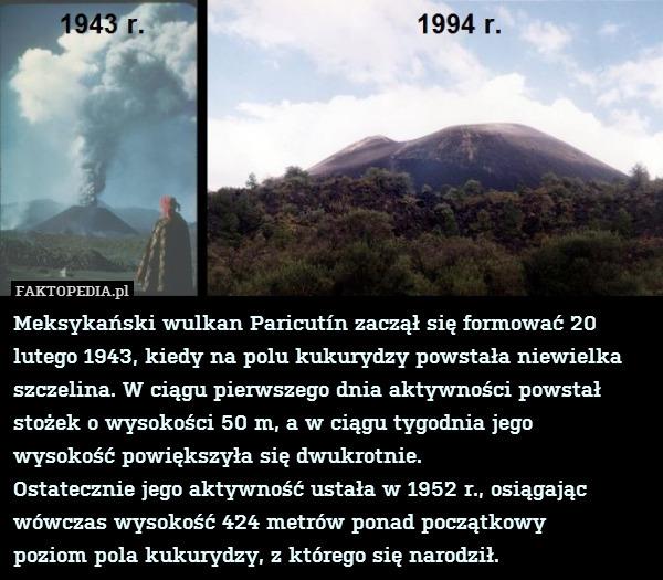 Meksykański wulkan Paricutín zaczął – Meksykański wulkan Paricutín zaczął się formować 20 lutego 1943, kiedy na polu kukurydzy powstała niewielka szczelina. W ciągu pierwszego dnia aktywności powstał stożek o wysokości 50 m, a w ciągu tygodnia jego wysokość powiększyła się dwukrotnie. Ostatecznie jego aktywność ustała w 1952 r., osiągając wówczas wysokość 424 metrów ponad początkowy poziom pola kukurydzy, z którego się narodził.