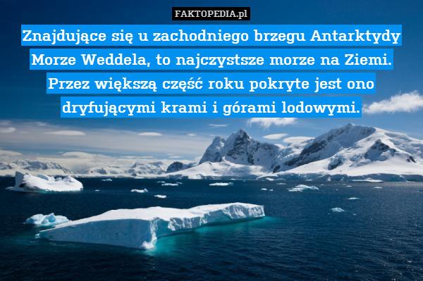 Znajdujące się u zachodniego brzegu – Znajdujące się u zachodniego brzegu Antarktydy Morze Weddela, to najczystsze morze na Ziemi. Przez większą część roku pokryte jest ono dryfującymi krami i górami lodowymi.