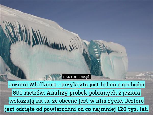 Jezioro Whillansa - przykryte – Jezioro Whillansa - przykryte jest lodem o grubości 800 metrów. Analizy próbek pobranych z jeziora wskazują na to, że obecne jest w nim życie. Jezioro jest odcięte od powierzchni od co najmniej 120 tys. lat.