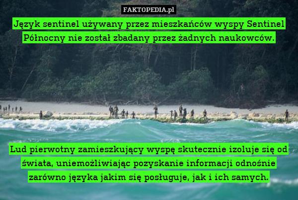 Język sentinel używany przez mieszkańców – Język sentinel używany przez mieszkańców wyspy Sentinel Północny nie został zbadany przez żadnych naukowców.        Lud pierwotny zamieszkujący wyspę skutecznie izoluje się od świata, uniemożliwiając pozyskanie informacji odnośnie zarówno języka jakim się posługuje, jak i ich samych.