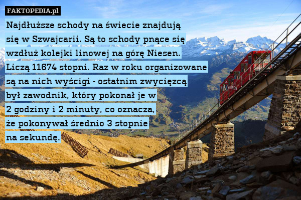 Najdłuższe schody na świecie znajdują – Najdłuższe schody na świecie znajdują się w Szwajcarii. Są to schody pnące się wzdłuż kolejki linowej na górę Niesen. Liczą 11674 stopni. Raz w roku organizowane są na nich wyścigi - ostatnim zwycięzcą był zawodnik, który pokonał je w 2 godziny i 2 minuty, co oznacza, że pokonywał średnio 3 stopnie na sekundę.