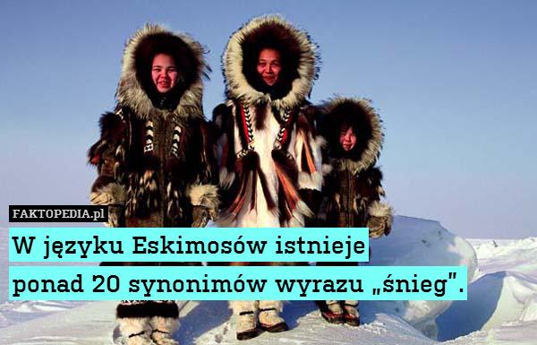 """W języku Eskimosów istnieje ponad – W języku Eskimosów istnieje ponad 20 synonimów wyrazu """"śnieg""""."""
