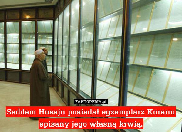 Saddam Husajn posiadał egzemplarz – Saddam Husajn posiadał egzemplarz Koranu spisany jego własną krwią.
