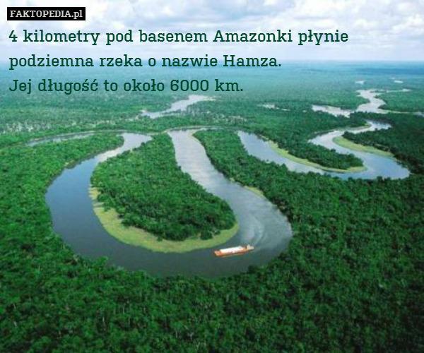 4 kilometry pod basenem Amazonki – 4 kilometry pod basenem Amazonki płynie podziemna rzeka o nazwie Hamza. Jej długość to około 6000 km.