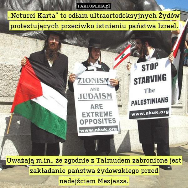 """""""Neturei Karta"""" to odłam ultraortodoksyjnych – """"Neturei Karta"""" to odłam ultraortodoksyjnych Żydów protestujących przeciwko istnieniu państwa Izrael.             Uważają m.in., że zgodnie z Talmudem zabronione jest zakładanie państwa żydowskiego przed nadejściem Mesjasza."""