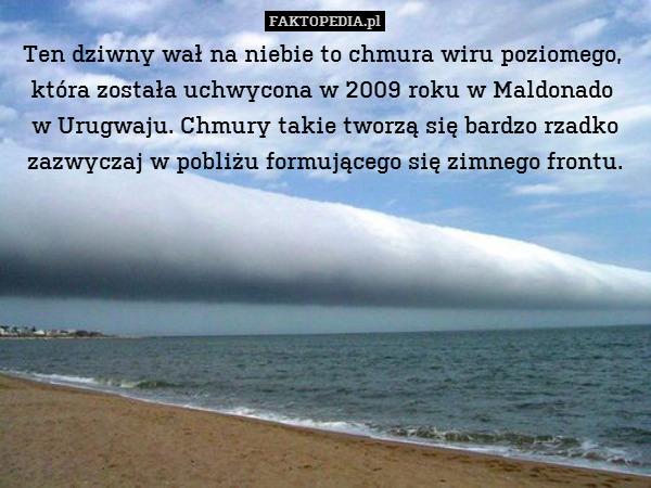 Ten dziwny wał na niebie to chmura – Ten dziwny wał na niebie to chmura wiru poziomego,  która została uchwycona w 2009 roku w Maldonado  w Urugwaju. Chmury takie tworzą się bardzo rzadko zazwyczaj w pobliżu formującego się zimnego frontu.