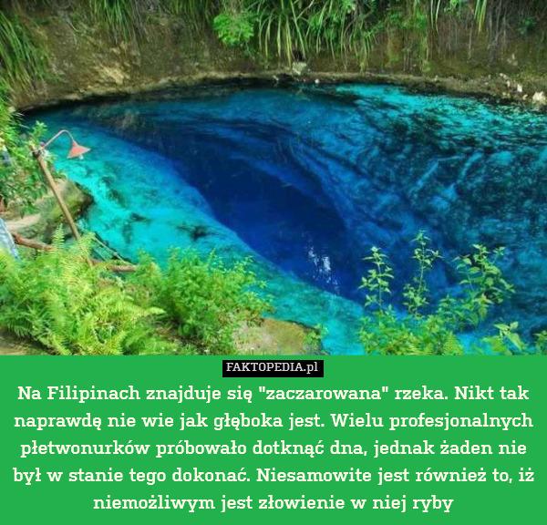 """Na Filipinach znajduje się """"zaczarowana"""" – Na Filipinach znajduje się """"zaczarowana"""" rzeka. Nikt tak naprawdę nie wie jak głęboka jest. Wielu profesjonalnych płetwonurków próbowało dotknąć dna, jednak żaden nie był w stanie tego dokonać. Niesamowite jest również to, iż niemożliwym jest złowienie w niej ryby"""