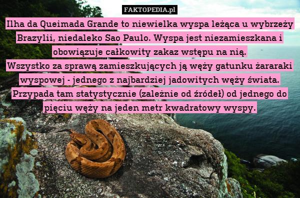 Ilha da Queimada Grande to niewielka – Ilha da Queimada Grande to niewielka wyspa leżąca u wybrzeży Brazylii, niedaleko Sao Paulo. Wyspa jest niezamieszkana i obowiązuje całkowity zakaz wstępu na nią. Wszystko za sprawą zamieszkujących ją węży gatunku żararaki wyspowej - jednego z najbardziej jadowitych węży świata. Przypada tam statystycznie (zależnie od źródeł) od jednego do pięciu węży na jeden metr kwadratowy wyspy.