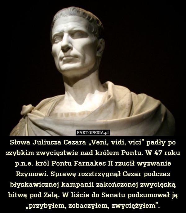 Słowa Juliusza Cezara Veni Vidi