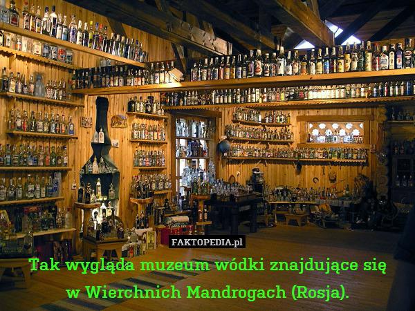 Tak wygląda muzeum wódki znajdujące – Tak wygląda muzeum wódki znajdujące się w Wierchnich Mandrogach (Rosja).