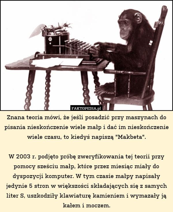 teoria o małpach