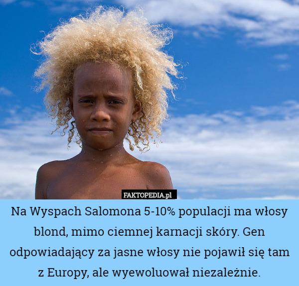 Na Wyspach Salomona 5-10% populacji ma włosy blond, mimo ciemnej karnacji – Na Wyspach Salomona 5-10% populacji ma włosy blond, mimo ciemnej karnacji skóry. Gen odpowiadający za jasne włosy nie pojawił się tam z Europy, ale wyewoluował niezależnie.