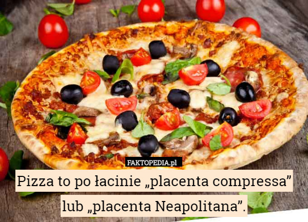 "Pizza to po łacinie ""placenta compressa"" lub ""placenta Neapolitana"". – Pizza to po łacinie ""placenta compressa"" lub ""placenta Neapolitana""."